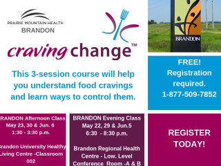 Craving Change poster features a picture of the City of Brandon sign as well as event details